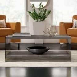 Lassiter Modern Coffee Table with Tray Top