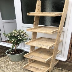 Ladder Shelf Shoe Rack (1)