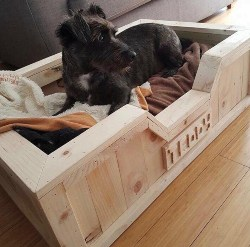 6. Personalized Pallet Dog Bed (1)