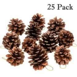 outdoor christmas decoration - Rustic Pinecones with String