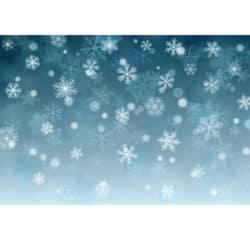 outdoor christmas decoration - Snowflake Theme Photo Backdrop