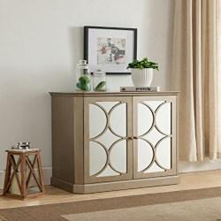 Cheap Modern Furniture Ideas - 2 Door Mirrored Storage Cabinet (1)