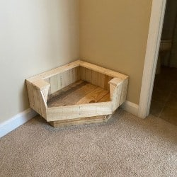 Modern Pallet furniture - Pet Pallet (1)