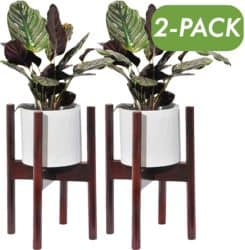 cheap modern furniture -  Encore Essentials Planter Holder