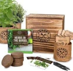 Best Unique Housewarming gifts - Herb Garden Starter Kit