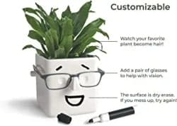 Novelty Planter That Holds Plants Glasses and You Can Draw On It