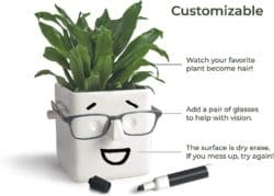 Novelty Planter That Holds Plants, Glasses & You Can Draw On It