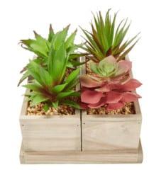 housewarming gifts for men - Pure Garden 4-Piece Faux Succulent Arrangement With Wood Boxes