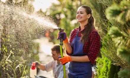 10 Best Expandable Garden Hose For Your Garden
