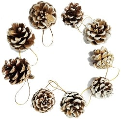 Rustic Pinecones with String (1)