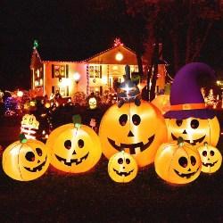 7 Pumpkins, Cat, Witch Hats (1)