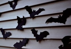 Bat Decor (1)