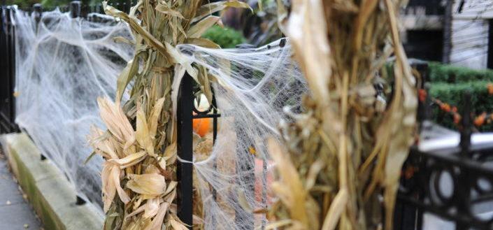 Outdoor vintage halloween decorations.jpg