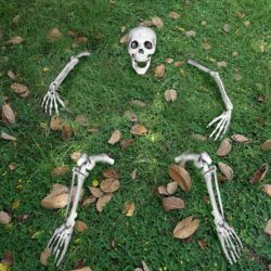 Outdoor vintage outdoor Halloween decorations - Life Size Groundbreaker Skeleton Stakes