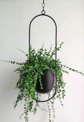 mid century modern apartment living Room Furniture - RISEON Plant Hanger
