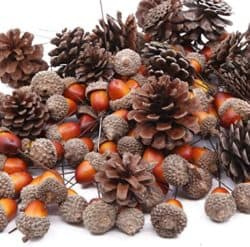 Artificial Acorns and Pinecones