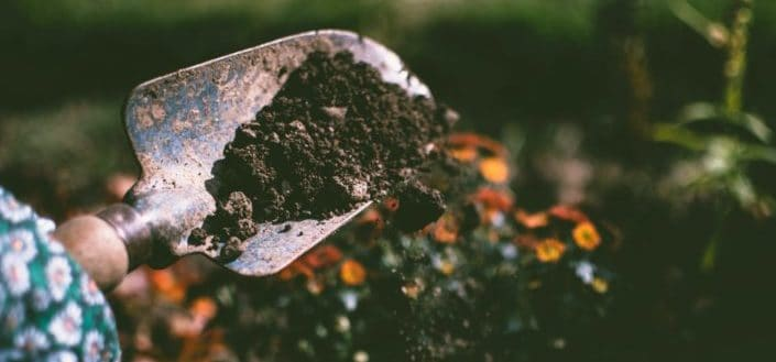 Get The Right Soil Mix