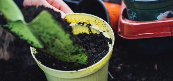 Shovel putting soil in a pot