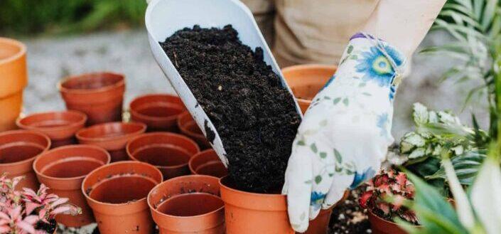a woman putting soil inside a pot