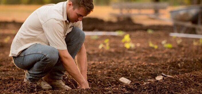 man planting on soil