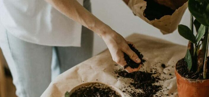 a hand spreading out soil