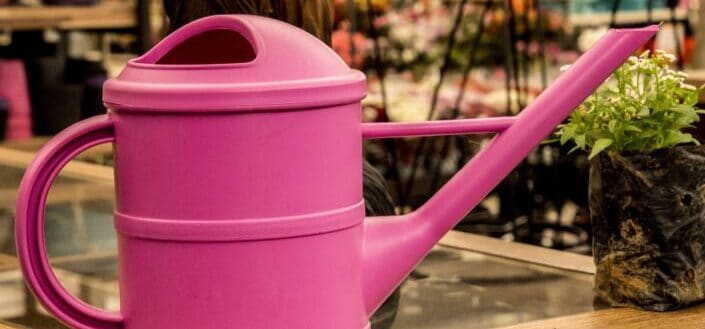 Pink watering can on a glass table.