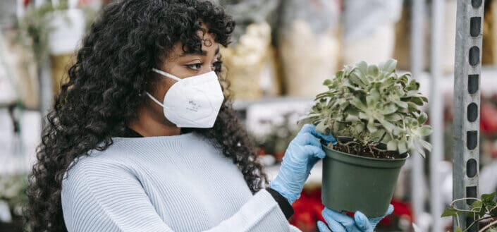 Black woman in medical mask examining potted echeveria