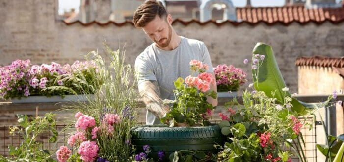 Handsome man taking care of his garden full of flowers